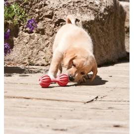 Busy Buddy Puppy Waggle Medium / Large