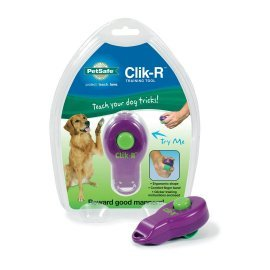 Clik-R™ Dog Training Tool