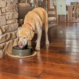 Drinkwell Current Pet Fountain - Large 3.5L