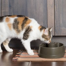 Drinkwell Current Pet Fountain - Small 1.2L