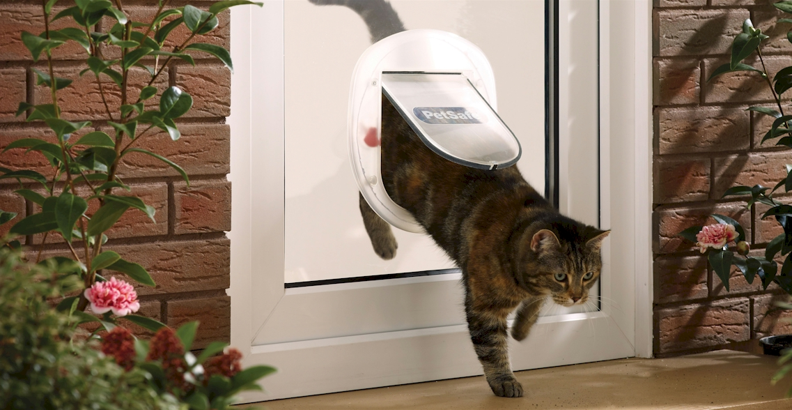 Cat Flap designed for glass double glazed units.