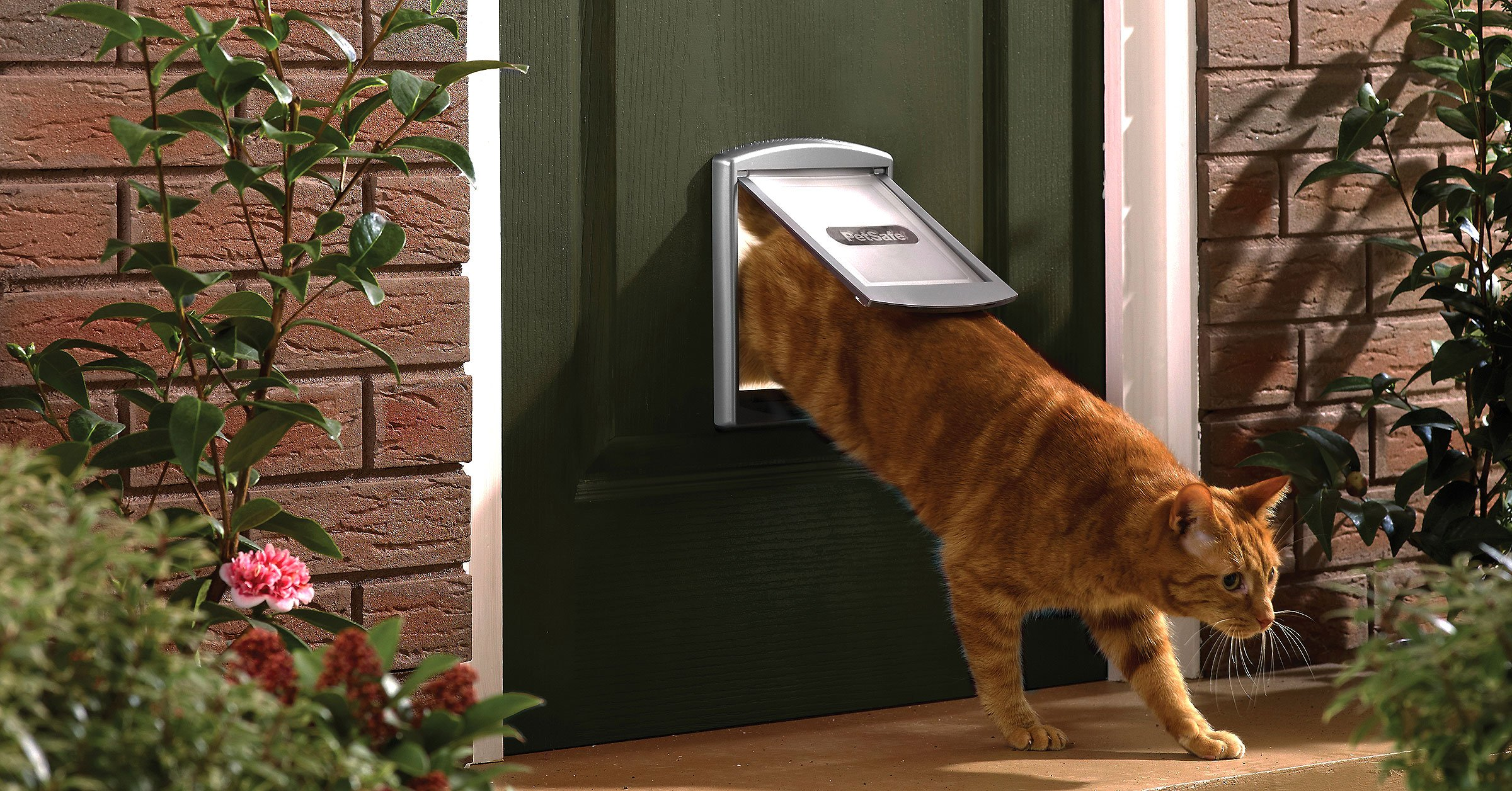 Grey flap designed for dogs and cats Staywell PetSafe