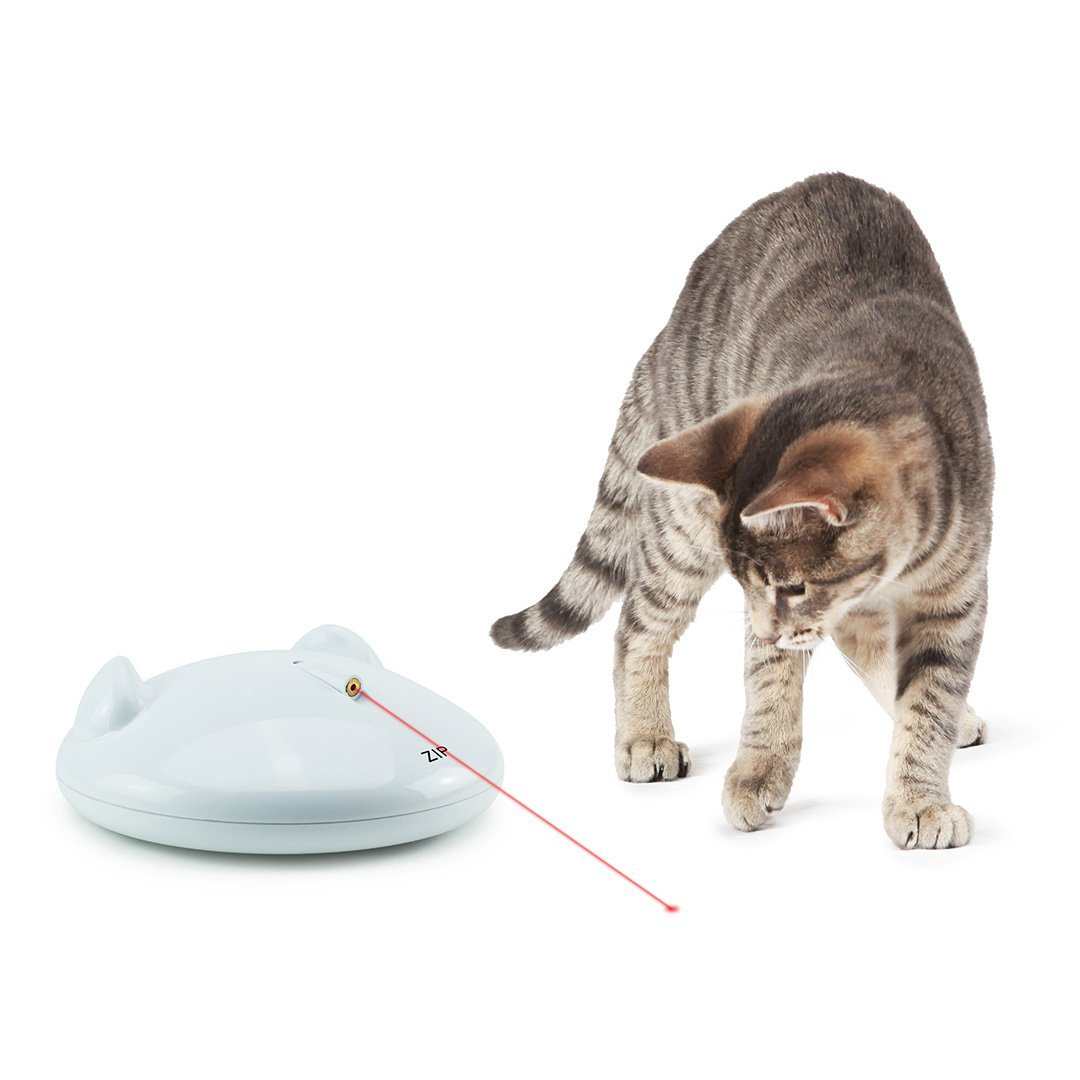 Laser floor toy for interactive cats.